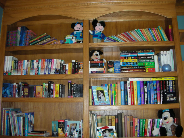 My Shelves A Look At Books